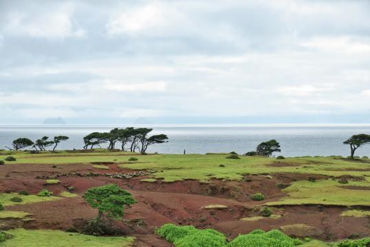 View of Nozaki Island 1