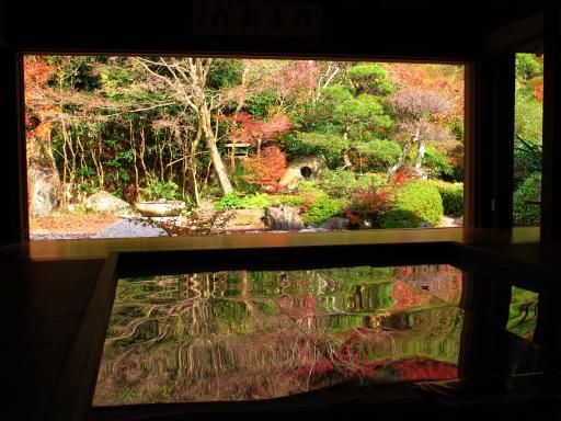 Jufukuji - Fall Leaves 2