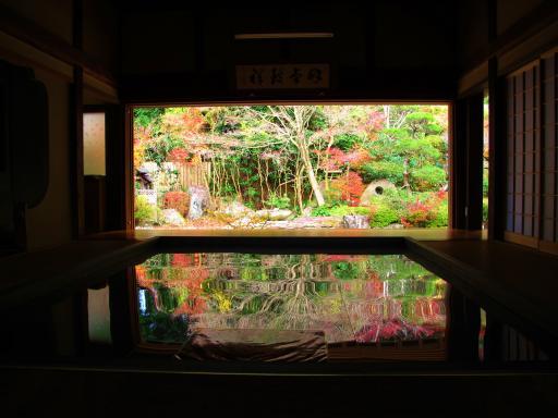 Jufukuji - Fall Leaves 3