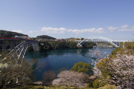 Saikai Bridge & Shin-Saikai Bridge (Cherry Blossom)