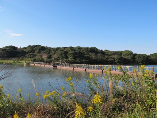 Shiratake Park (Emukaecho)