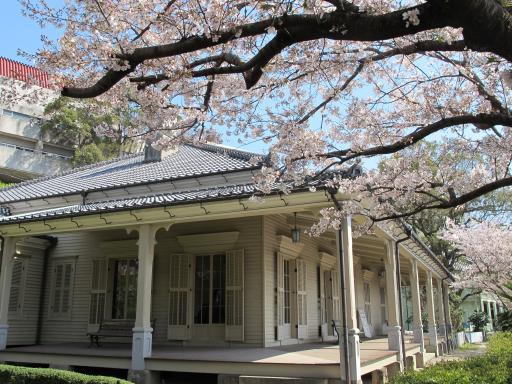 Higashiyamate No.12 Residence - Cherry Blossom 2