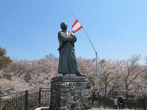 Kazagashira Park - Statue of Sakamoto Ryoma & Cherry Blossom