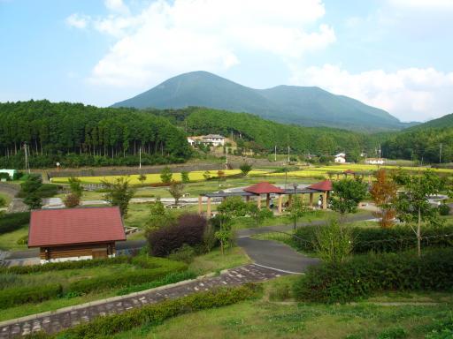 Nodakeko Park - Rosa Mota Square 1