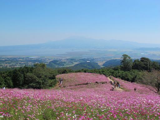 Shirakimine Plateau (Cosmos) 4