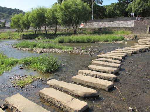 Honmyo River - Steppingstones 2