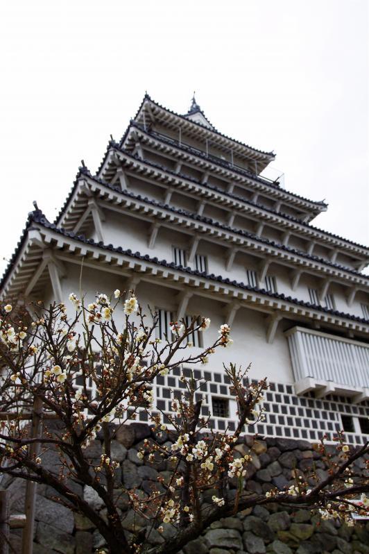 Shimabara Castle 5