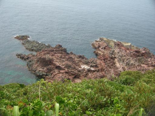 Akasebana