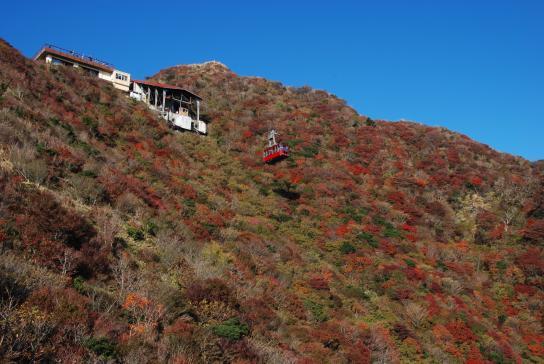 Nita Pass - Fall Leaves & Ropeway 4
