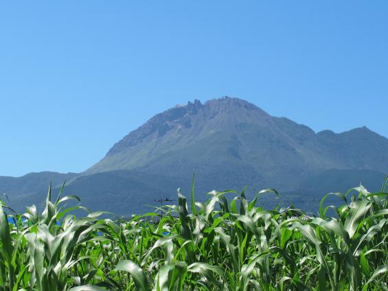 Fugendake (from Ariakecho Green Road)
